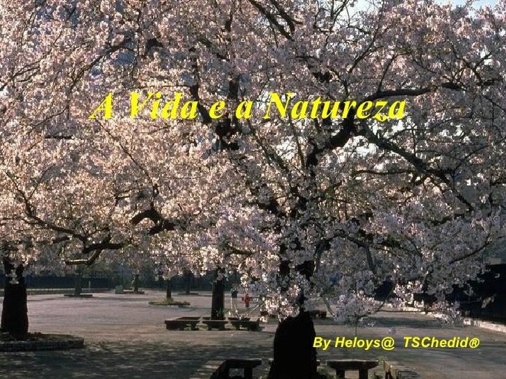 <ul><li>By Heloys@  TSChedid  </li></ul>A Vida e a Natureza
