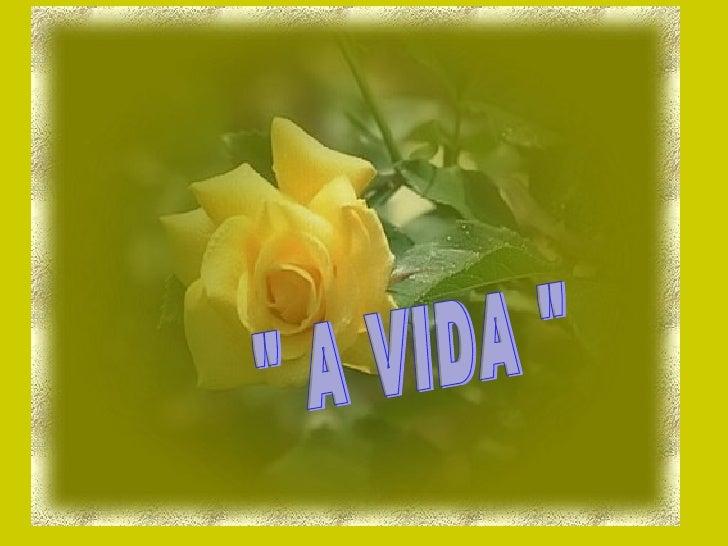 """"""" A VIDA """""""