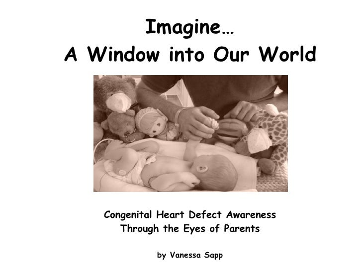 Imagine… A Window into Our World Congenital Heart Defect Awareness Through the Eyes of Parents by Vanessa Sapp