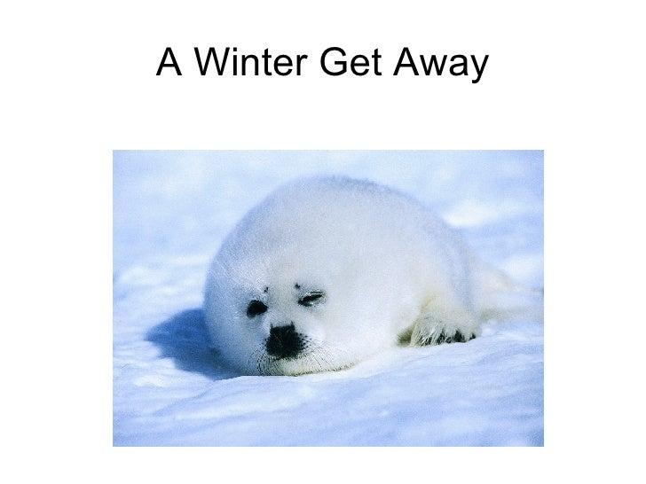 A Winter Get Away