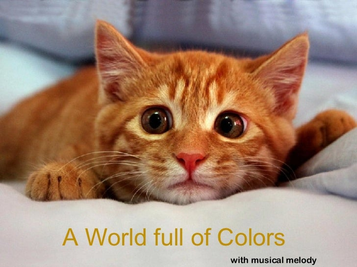 A World full of Colors with musical melody
