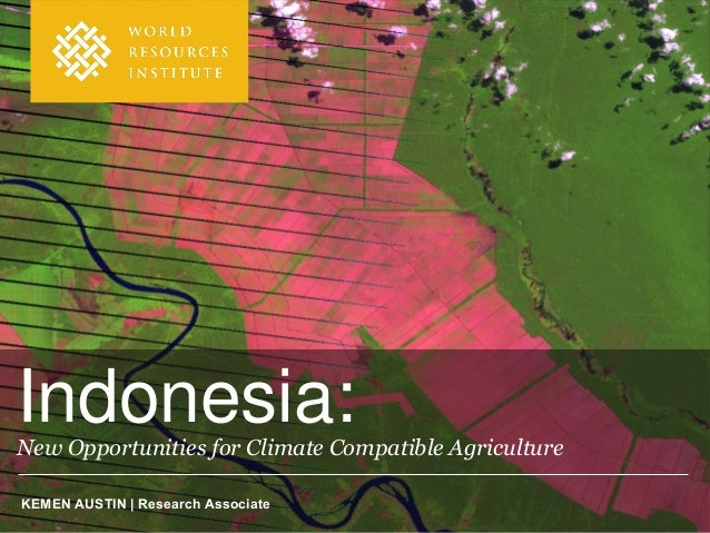 Indonesia:New Opportunities for Climate Compatible AgricultureKEMEN AUSTIN | Research Associate