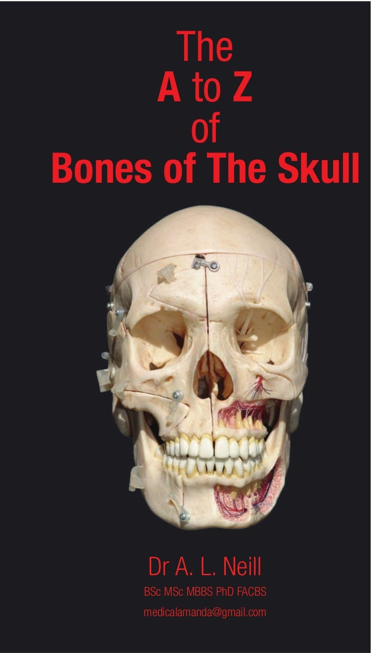 The     A to Z        ofBones of The Skull     Dr A. L. Neill     BSc MSc MBBS PhD FACBS     medicalamanda@gmail.com