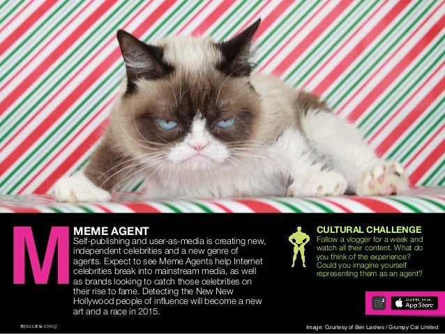 AGENCY OF RELEVANCE MEME AGENT Self-publishing and user-as-media is creating new, independent celebrities and a new genre ...