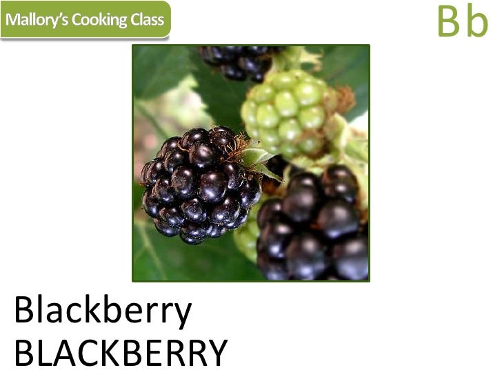 Mallory's Cooking Class<br />Bb<br />Blackberry<br />BLACKBERRY<br />