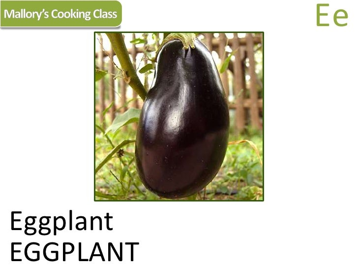 Mallory's Cooking Class<br />Ee<br />Eggplant<br />EGGPLANT<br />