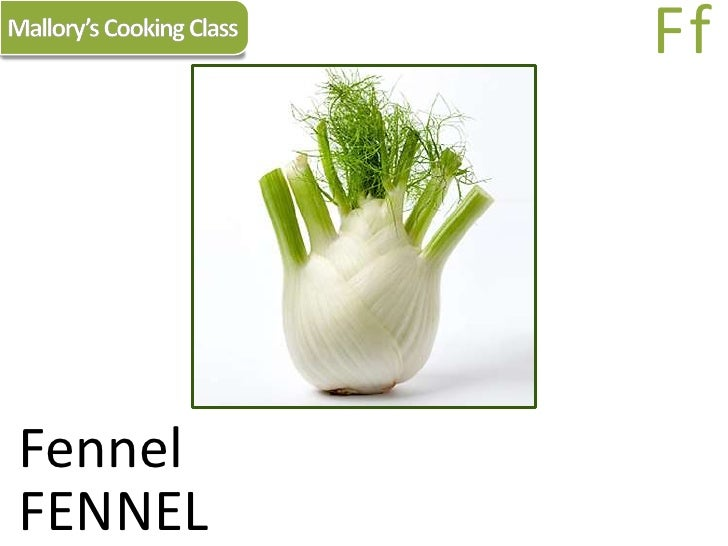 Mallory's Cooking Class<br />Ff<br />Fennel<br />FENNEL<br />