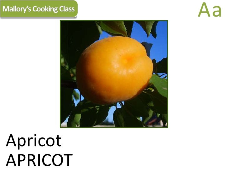 Mallory's Cooking Class<br />Aa<br />Apricot<br />APRICOT<br />