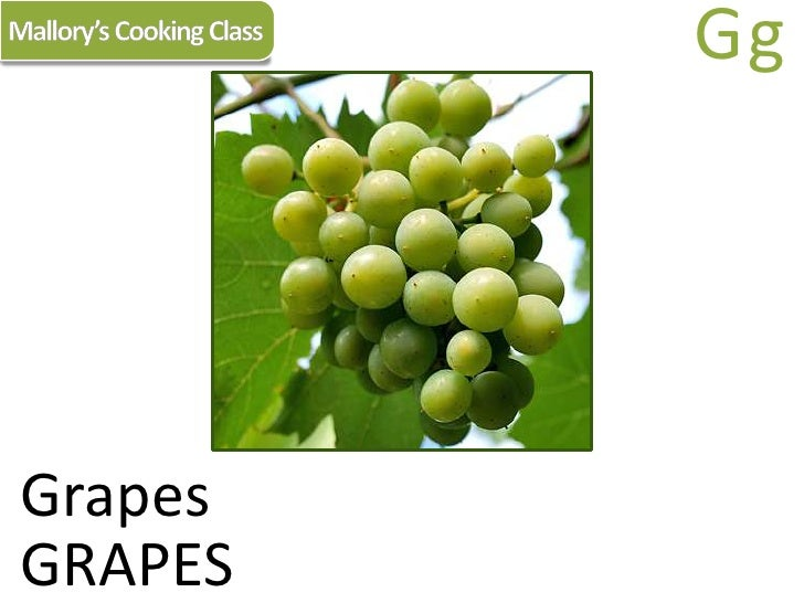 Mallory's Cooking Class<br />Gg<br />Grapes<br />GRAPES<br />