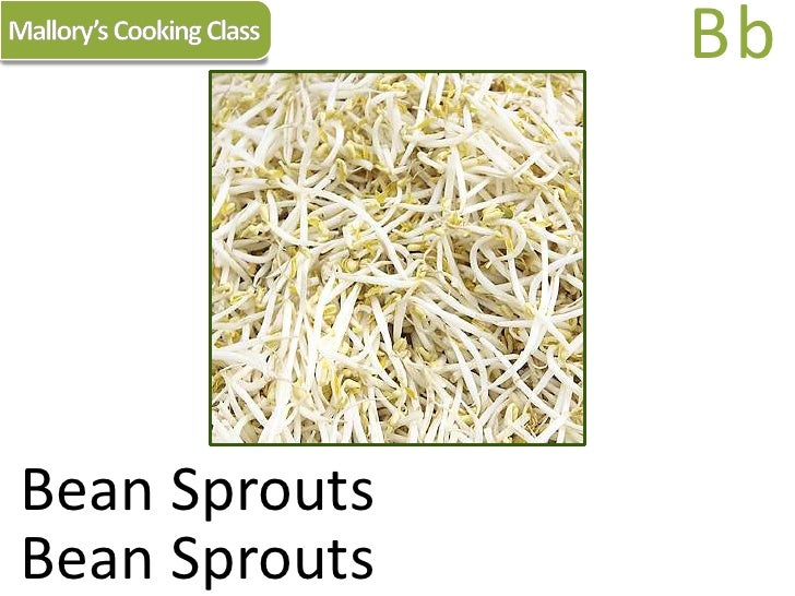 Mallory's Cooking Class<br />Bb<br />Bean Sprouts<br />Bean Sprouts<br />