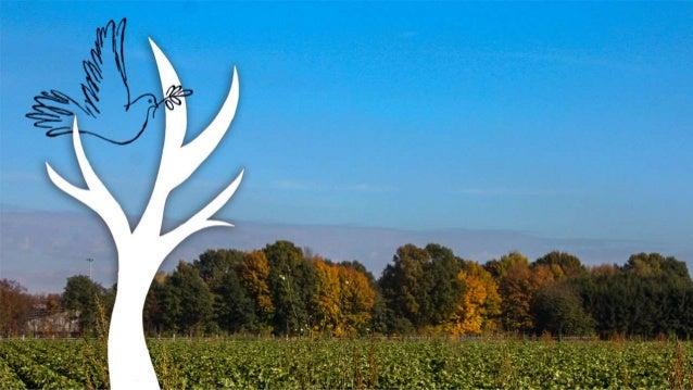 Dat Vrede Mag Stromen Als Wind Door De Bomen Kerstmis 2016