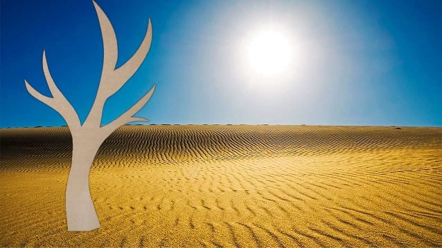 0 De mensen zijn als bomen ze zoeken goede grond. Toch blijven ze nog dromen van 't land van Jouw verbond. De takken naar ...