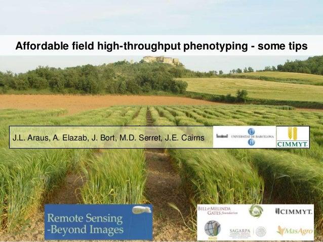 Affordable field high-throughput phenotyping - some tips  J.L. Araus, A. Elazab, J. Bort, M.D. Serret, J.E. Cairns