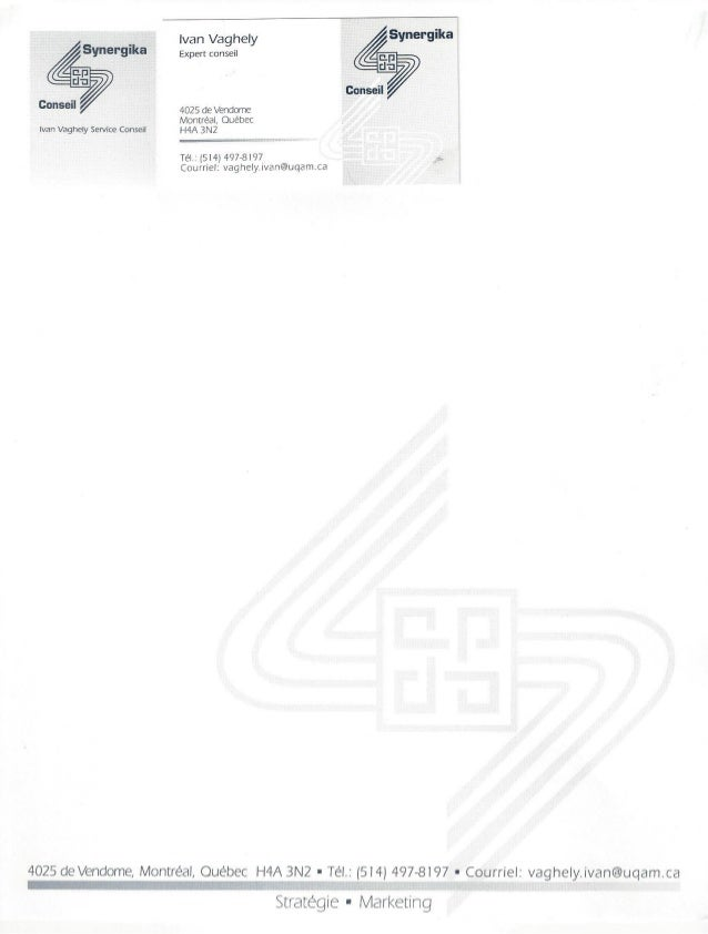 Synergika.Groupe-Conseil