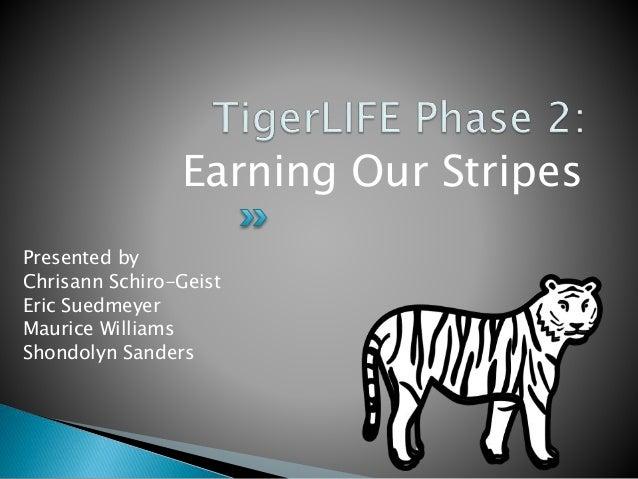 Presented by Chrisann Schiro-Geist Eric Suedmeyer Maurice Williams Shondolyn Sanders Earning Our Stripes