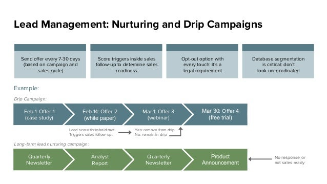 Lead Management: Nurturing and Drip