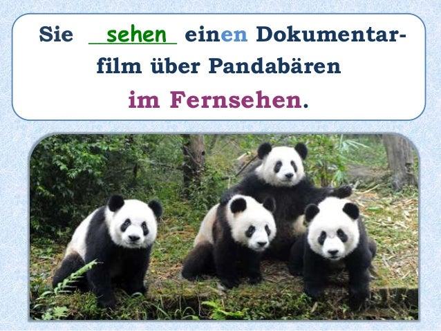 Sie ________ einen Dokumentar- film über Pandabären im Fernsehen ____________. haben gesehen