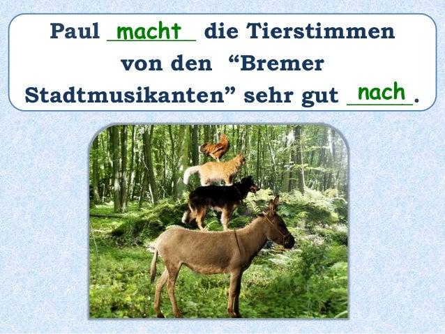 """Paul ______ die Tierstimmen von den """"Bremer Stadtmusikanten"""" sehr gut ________________. hat nachgemacht"""