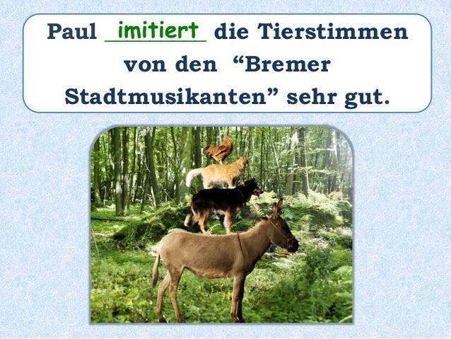 """Paul ______ die Tierstimmen von den """"Bremer Stadtmusikanten"""" sehr gut ___________. hat imitiert"""
