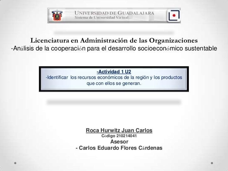 Licenciatura en Administración de las Organizaciones-Análisis de la cooperación para el desarrollo socioeconómico sustenta...