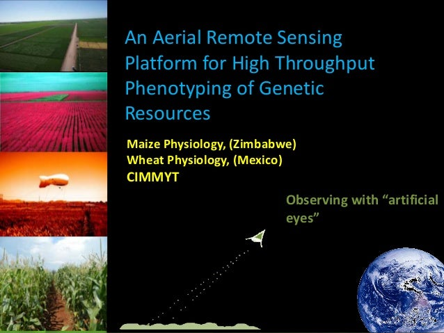 An Aerial Remote Sensing Platform for High Throughput Phenotyping of Genetic Resources Maize Physiology, (Zimbabwe) Wheat ...