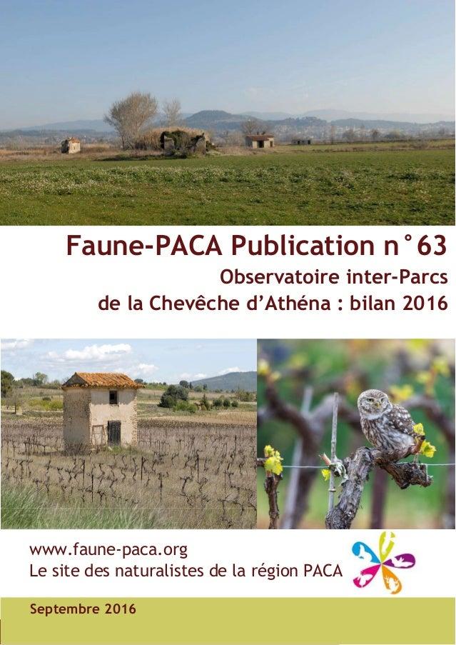 Faune-PACA Publication n°63 Observatoire inter-Parcs de la Chevêche d'Athéna : bilan 2016 Septembre 2016 www.faune-paca.or...