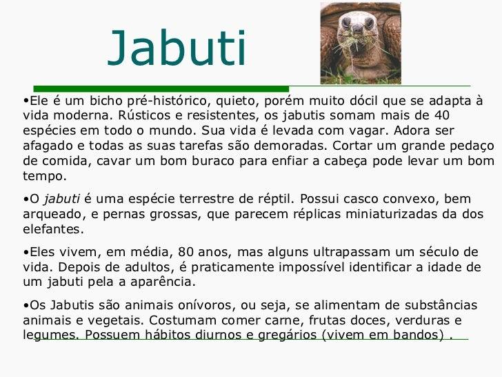 Jabuti <ul><li>Ele é um bicho pré-histórico, quieto, porém muito dócil que se adapta à vida moderna. Rústicos e resistente...