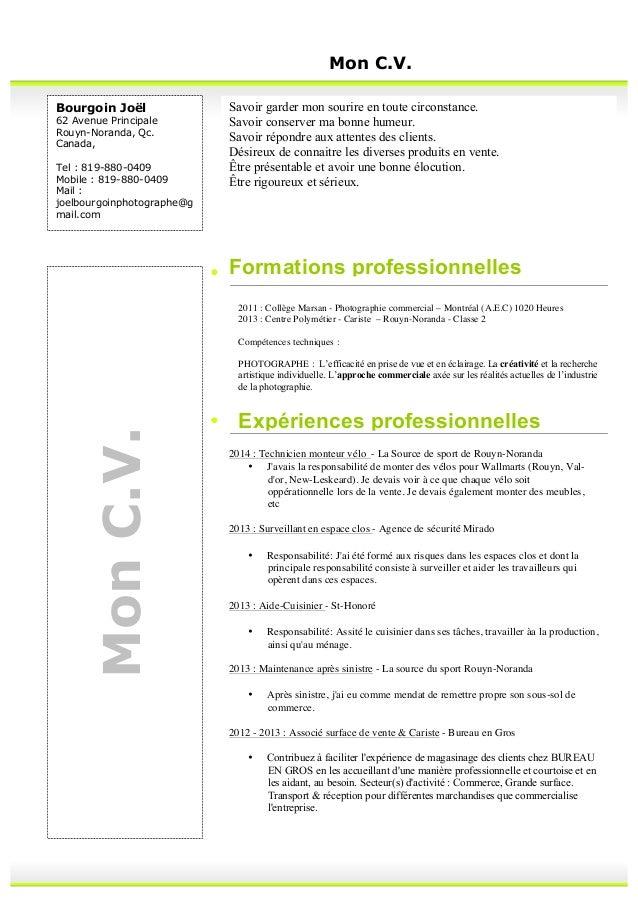 curriculum vitea 2015