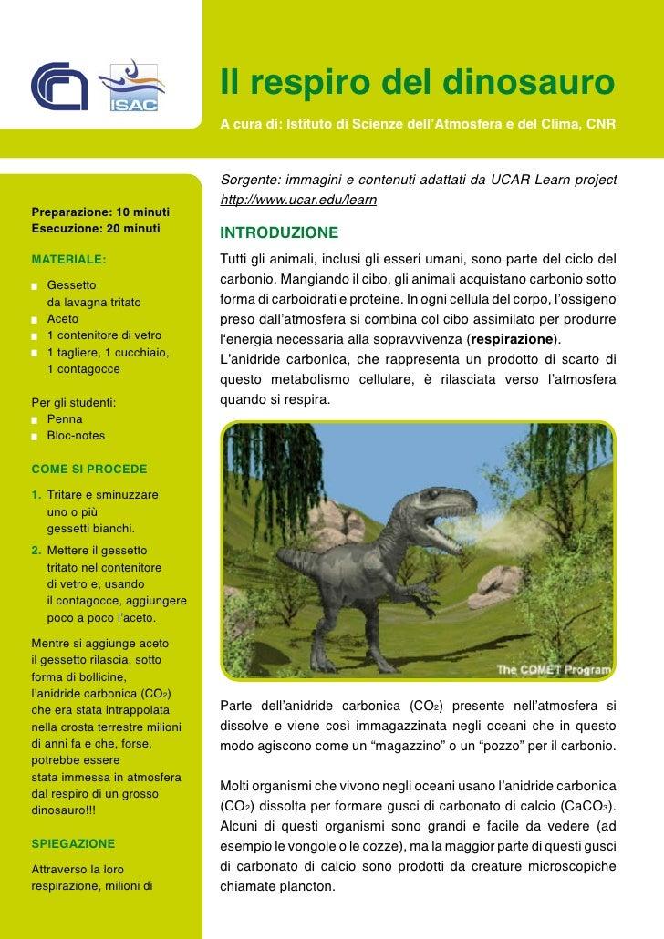 Il respiro del dinosauro                                  A cura di: Istituto di Scienze dell'Atmosfera e del Clima, CNR  ...