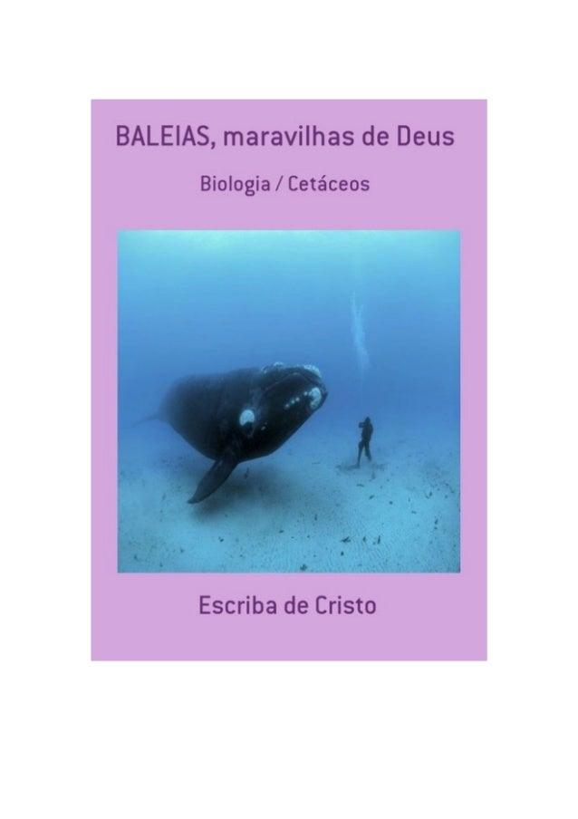 BALEIAS – Maravilhas de Deus, por: Escriba de Cristo FINALIDADE DESTA OBRA Os materiais literários do autor não têm fins l...