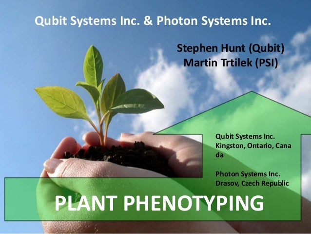 Qubit Systems Inc. & Photon Systems Inc. Stephen Hunt (Qubit) Martin Trtilek (PSI)  Qubit Systems Inc. Kingston, Ontario, ...