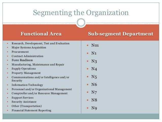 MIC Process DEVELOP MIC PLAN SEGMENT THE ORGANIZATION ASSIGN RESPONSIBILITY