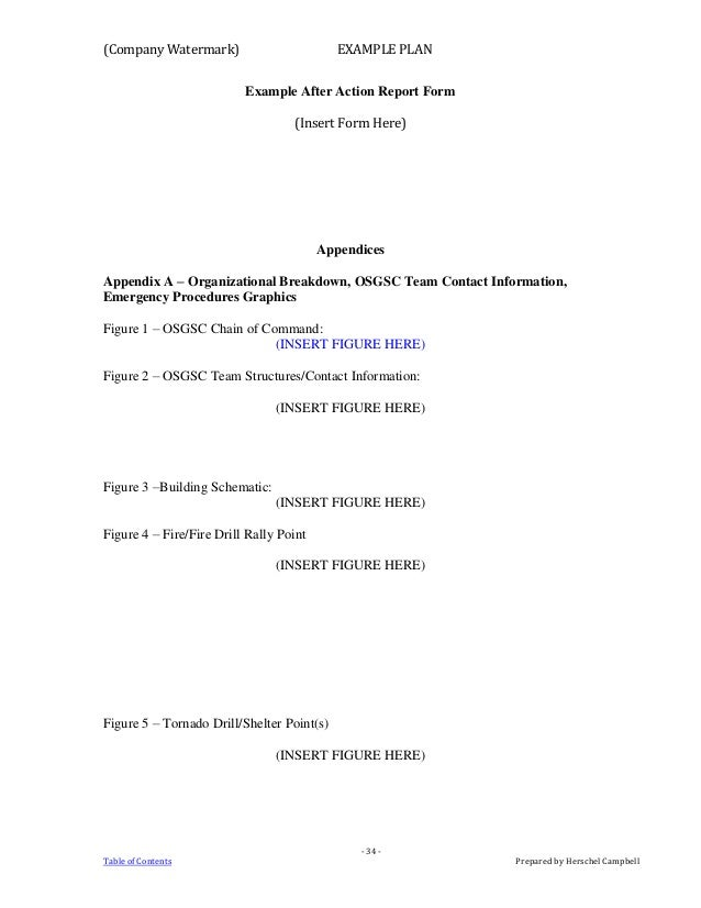 Example Crisis Action Plan 1 – Sample After Action Report Template