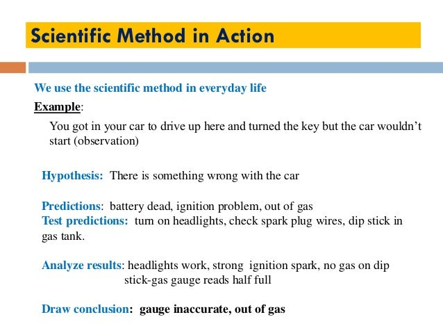scientific method examples worksheet