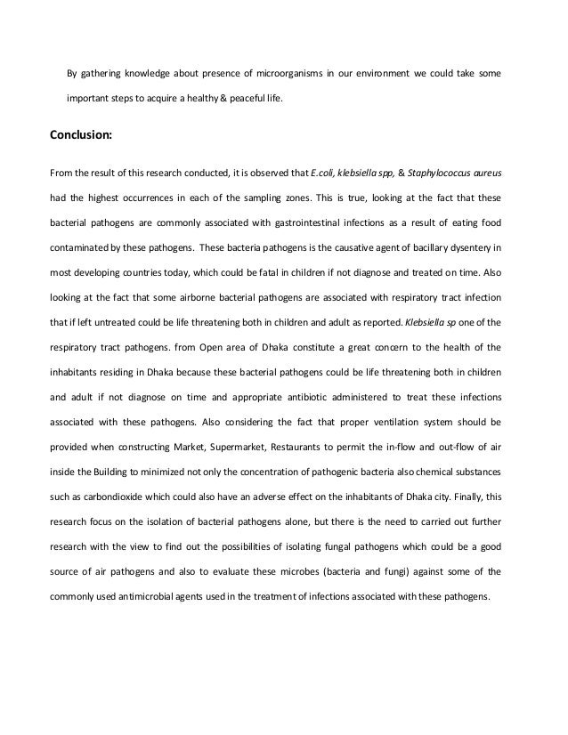 about traveling essay healthy