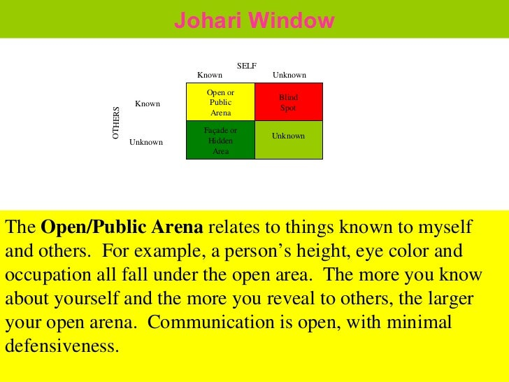 My Johari Window Essay