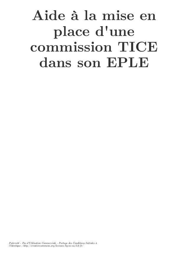 Aide à la mise en place d'une commission TICE dans son EPLE Paternité - Pas d'Utilisation Commerciale - Partage des Condit...