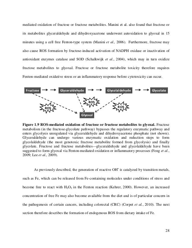 antioxidant enzymes thesis Administration of antioxidant enzymes cornelia palivan, sod antioxidant nanoreactors: the motivation and concept of the thesis are also briefly.