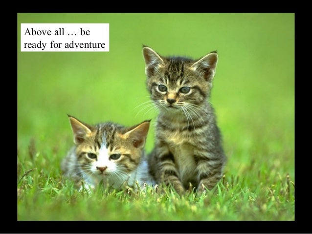 Above all … be ready for adventure