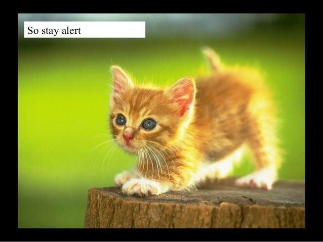 So stay alert