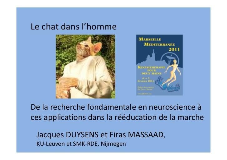 Le chat dans l'hommeDe la recherche fondamentale en neuroscience àces applications dans la rééducation de la marche Jacque...