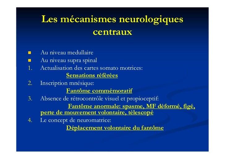 Les mécanismes neurologiques               centraux    Au niveau medullaire    Au niveau supra spinal1.   Actualisation ...