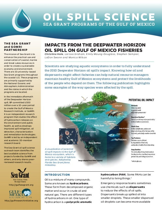 the consequences of the gulf of mexico oil spill Oil spill disaster causes & consequences  whose repeated stumbles during the company's three-month oil spill in the gulf of mexico alienated federal and.