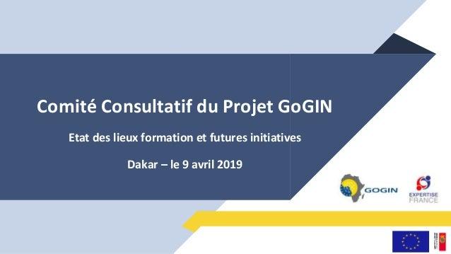 Comité Consultatif du Projet GoGIN Etat des lieux formation et futures initiatives Dakar – le 9 avril 2019