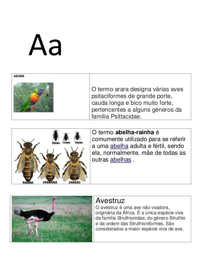 AaARARAO termo arara designa várias avespsitaciformes de grande porte,cauda longa e bico muito forte,pertencentes a alguns...