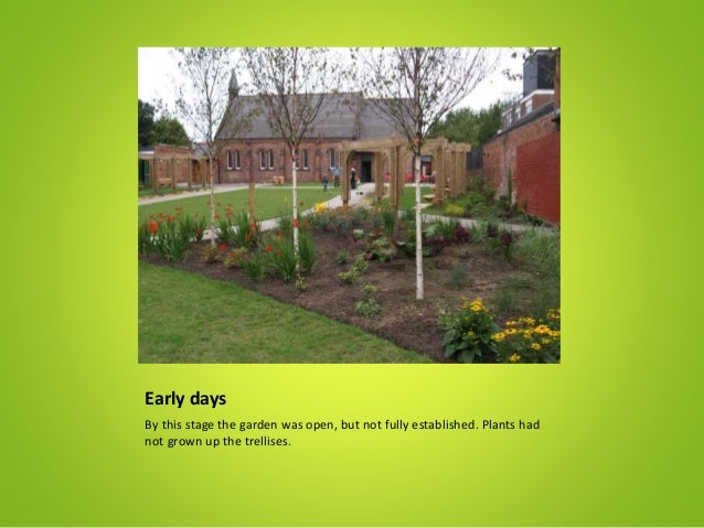 Early days By this stage the garden was open, but not fully established. Plants had not grown up the trellises.