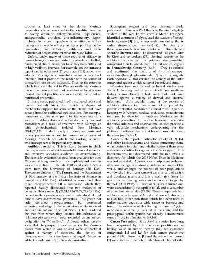 Sigmund freud research paper