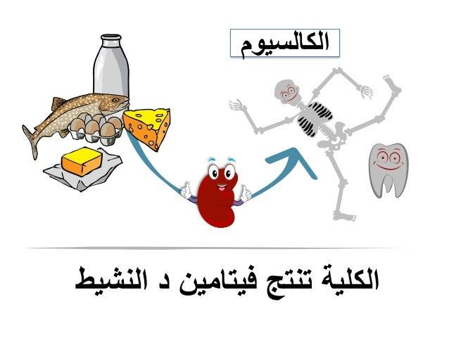 النشيط د فيتامين تنتج الكلية الكالسيوم