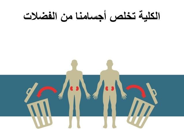 الفضالت من أجسامنا تخلص الكلية