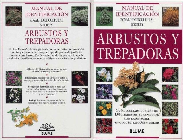 Aaa023x Botanica